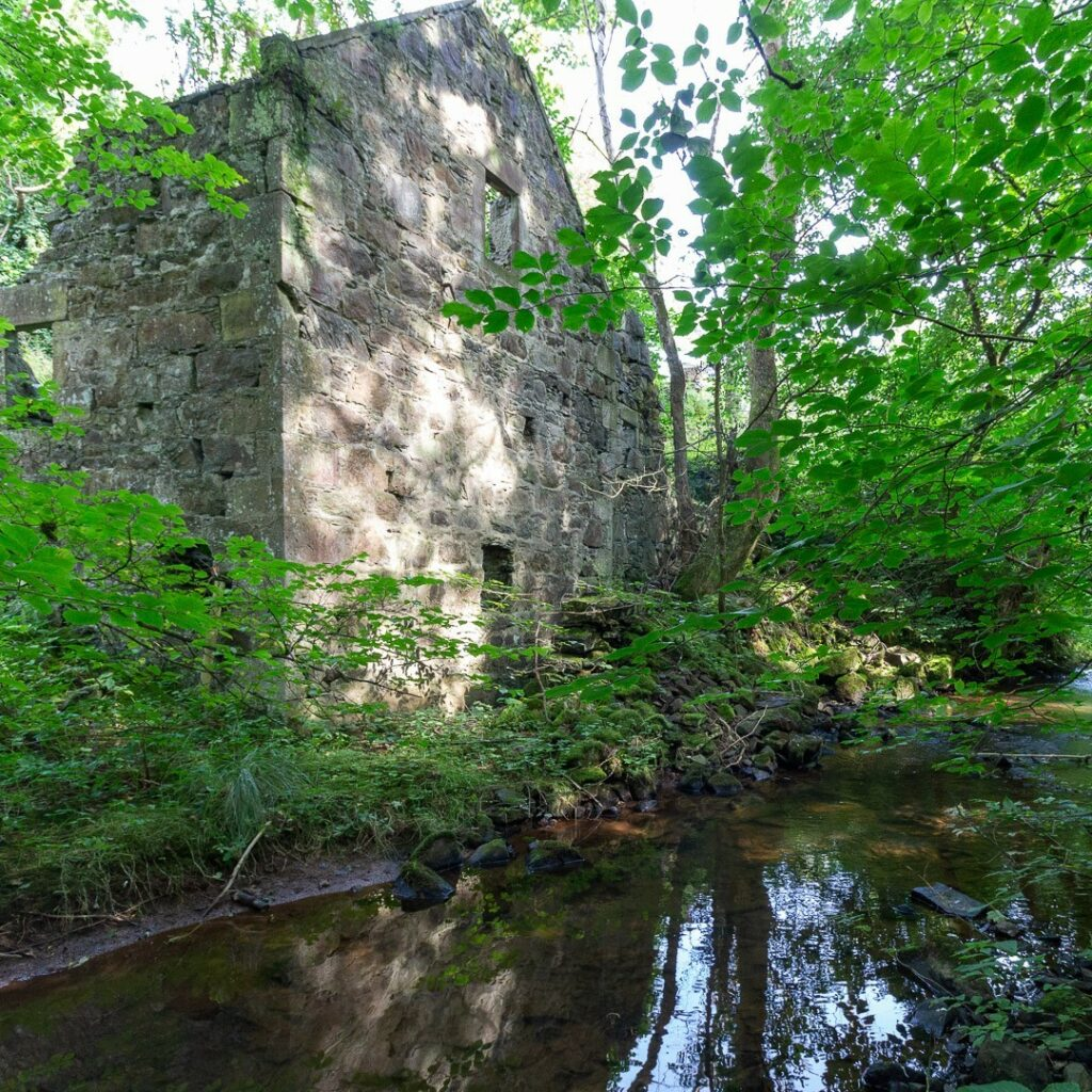 I recently paid a visit to the remains of Tifty Mill, which is quite close to my house. It was originally a waterwheel powered corn mill, dating back to the 17th Century. In its latter days, power from the waterwheel was transmitted via a series of pulleys and ropes to drive machinery in nearby farm buildings.⠀⠀⠀⠀⠀⠀⠀⠀⠀ ⠀⠀⠀⠀⠀⠀⠀⠀⠀ There's some more images and history over on my blog (link in bio)⠀⠀⠀⠀⠀⠀⠀⠀⠀ .⠀⠀⠀⠀⠀⠀⠀⠀⠀ .⠀⠀⠀⠀⠀⠀⠀⠀⠀ #Tifty #Fyvie #tiftymill #watermill #ruinedbuilding #overgrown #ruins #aberdeenshire #bestofourshire #loveaberdeenshire #visitabdn #scotlandscenery #yourscotland #scotlandgreatshots #aberdeenblogger