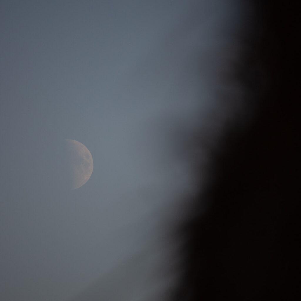First Quarter Moon.⠀⠀⠀⠀⠀⠀⠀⠀⠀ .⠀⠀⠀⠀⠀⠀⠀⠀⠀ .⠀⠀⠀⠀⠀⠀⠀⠀⠀ #moon #themoon #luna #selenophile #moonlovers #eveningsky #skywatcher #halfmoon #total_moon #moon_of_the_day #moon_awards  #observethemoon #welcometomoon #solarsystem #firstquartermoon