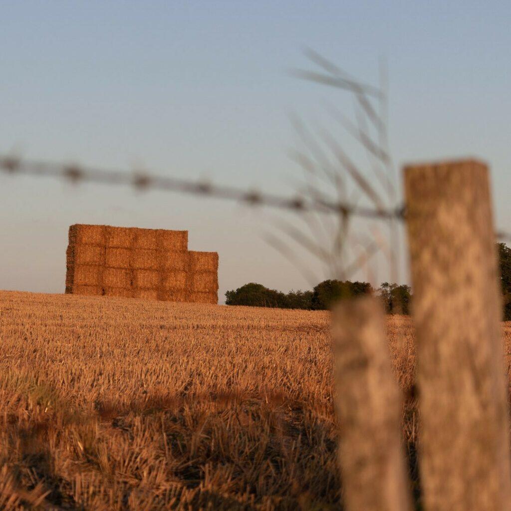 Stack of Bales at sunset.⠀⠀⠀⠀⠀⠀⠀⠀⠀ .⠀⠀⠀⠀⠀⠀⠀⠀⠀ .⠀⠀⠀⠀⠀⠀⠀⠀⠀ #crops #bales #farming #fence #barbedwire #agriculture #agripics #aberdeenshire #bestofourshire #loveaberdeenshire #visitabdn #scotlandscenery #yourscotland #scotlandgreatshots #aberdeenblogger #Tifty #Fyvie