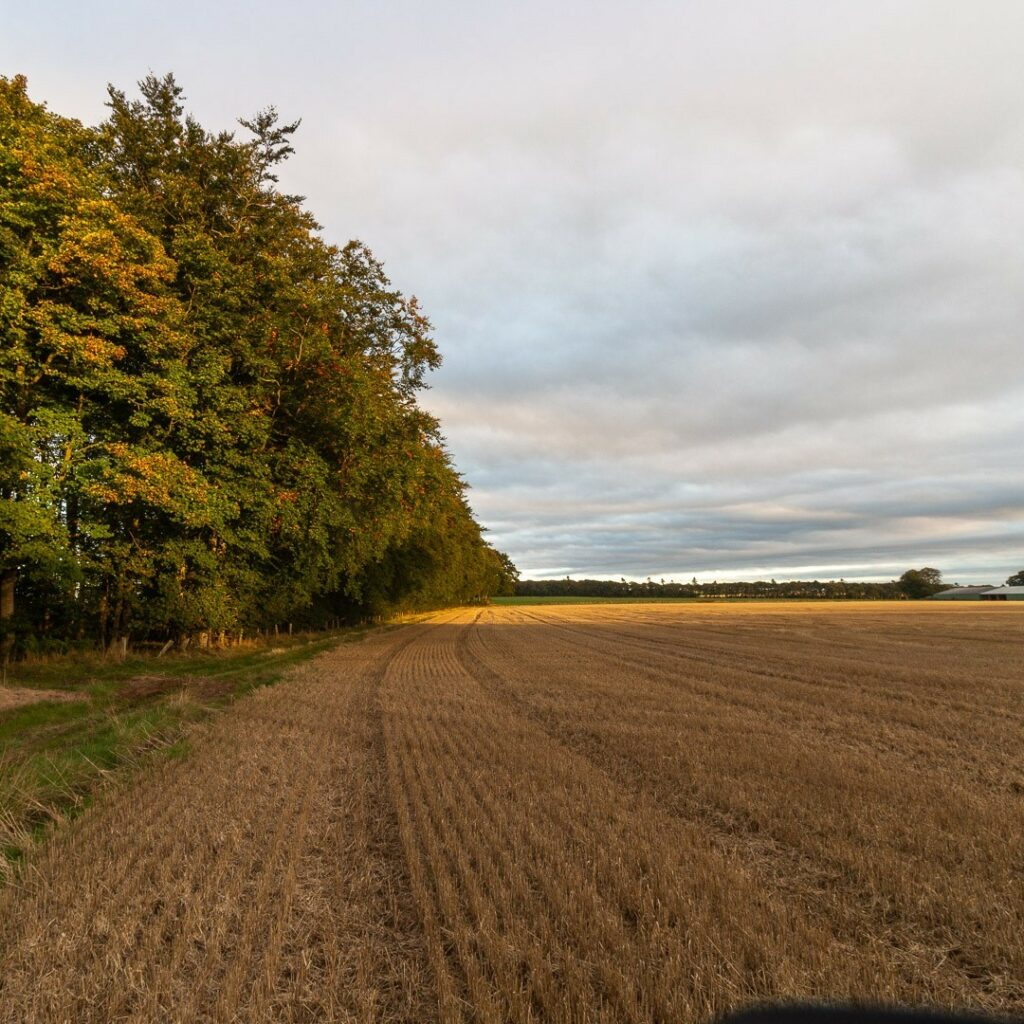 Autumn colours starting to show.⠀⠀⠀⠀⠀⠀⠀⠀⠀ .⠀⠀⠀⠀⠀⠀⠀⠀⠀ .⠀⠀⠀⠀⠀⠀⠀⠀⠀ .⠀⠀⠀⠀⠀⠀⠀⠀⠀ #visitscotland #scotspirit #ig_scotland #instascotland #scotlandsbeauty #scotland_insta #scotlandlover #scotland #thisisscotland #landscape #igdaily #igers #scotlandisnow #landscapecaptures #scotlandexplore #hiddenscotland #icu_scotland #visualsofscotland #explore_scotland #wildscotland #wonderfulplaces #scotlandlandscape #outandaboutscotland #landscapephotography #abdn #aberdeenshire #bestofourshire #loveaberdeenshire #visitabdn #fyvie