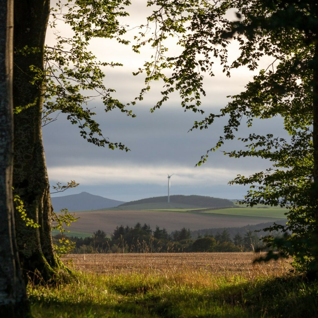Wind Turbine.⠀⠀⠀⠀⠀⠀⠀⠀⠀ .⠀⠀⠀⠀⠀⠀⠀⠀⠀ #visitscotland #ig_scotland #instascotland #scotlandsbeauty #scotland_insta #scotlandlover #scotland #thisisscotland #landscape #scotlandisnow #landscapecaptures #scotlandexplore #hiddenscotland #icu_scotland #visualsofscotland #explore_scotland #wildscotland #wonderfulplaces #scotlandlandscape #outandaboutscotland #Bennachie #landscapephotography #abdn #aberdeenshire #bestofourshire #loveaberdeenshire #green #windturbine #turbine #windenergy
